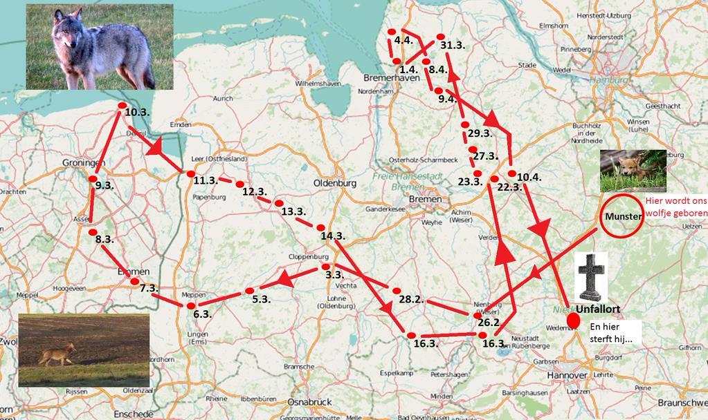 Route Drentse Wolf