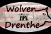 Wolf vastgelegd bij Barger-Compascuum